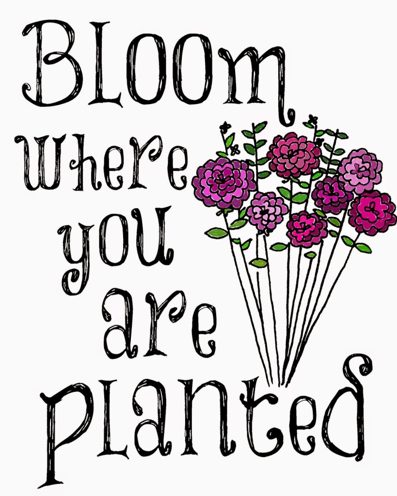 Bloom Where You Are Planted Printable The Benson Street