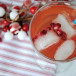 Cranberry Pomegranate Sparkling Water Recipe