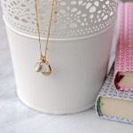 Chip Beauty and the Beast Necklace