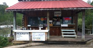 Bradley's Muscadine Slushies and Boiled Peanuts