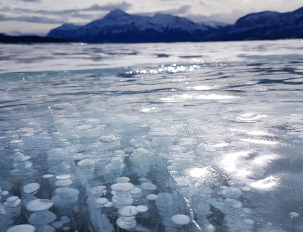 Abraham Lake Bubbles BBB