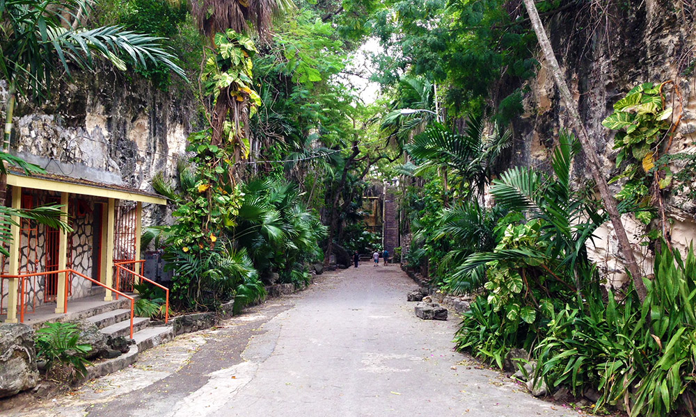Approaching Queen's Staircase, all was looking picturesque and tropical.