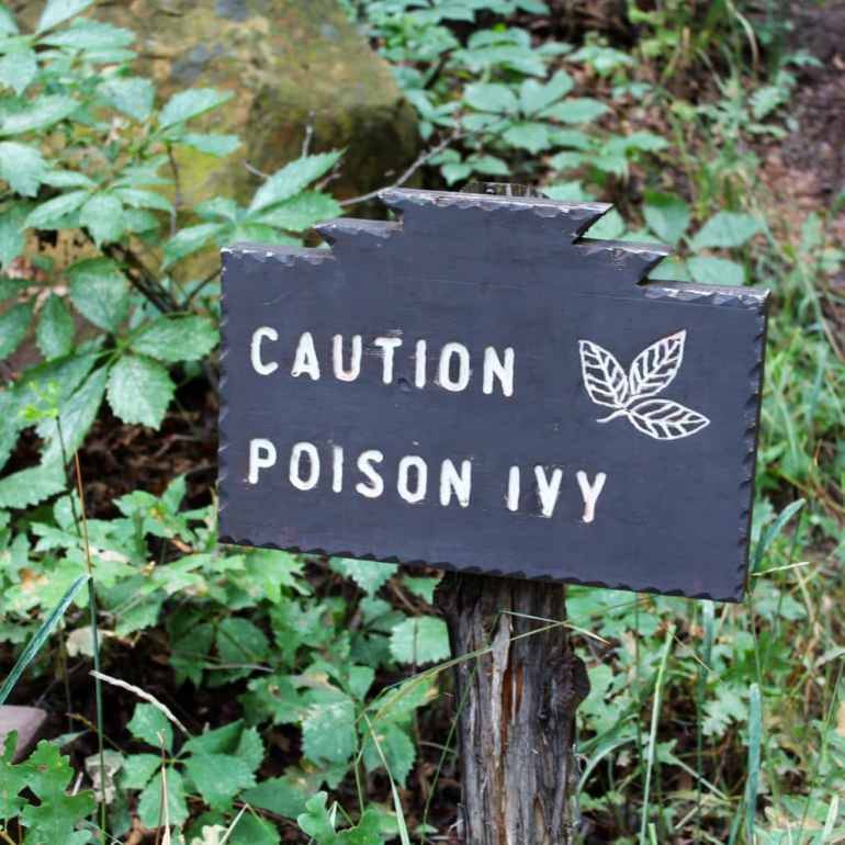 Poison Ivy of the Mind