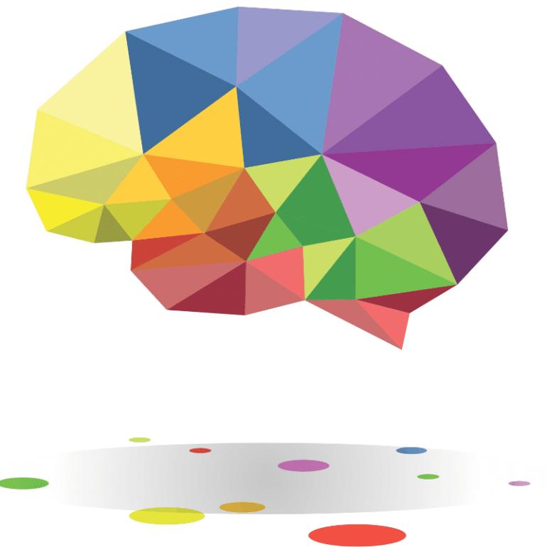 6 Basic Principles of Neuroplasticity