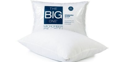 The Big One Pillow