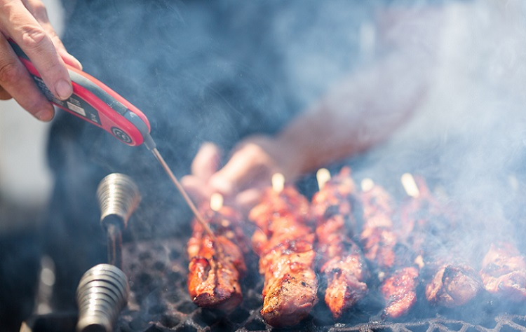 The Best Meat Thermometer For Smoker – Check Our Top Picks!