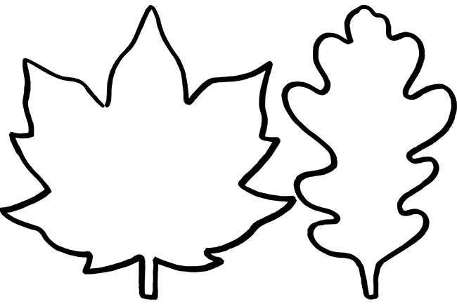 Fall Leaf Template. Leaf Templates Coloring Pages For Kids