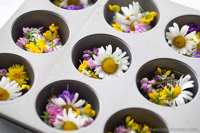 Add Flowers to Muffin Cups