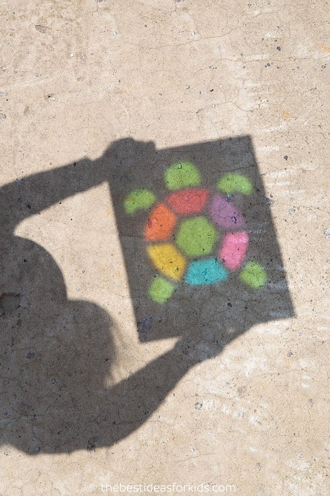 Turtle Shadow Art