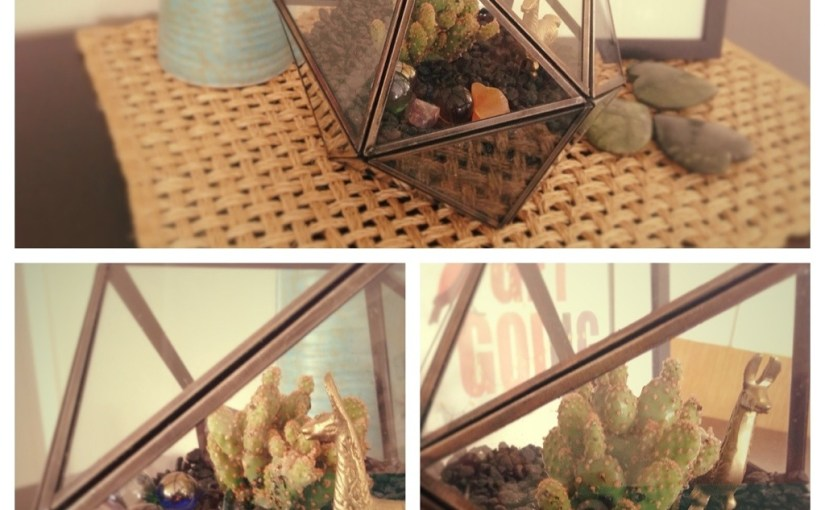 Acquisitions | Urban Outfitters Terrarium