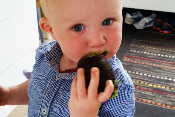 Baby Eating Avocado