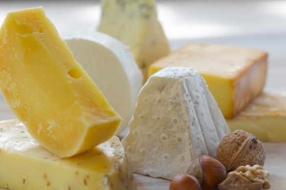 Win tickets to Cheesefest on NZ Mummy blog
