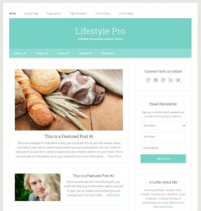 lifestlyle theme