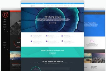 Divi – Very Smart and Flexible Theme from Elegant Themes