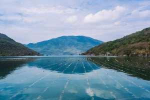 Australis Aquaculture SeaweedFarm