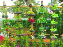 Garden Ideas for Recycling Plastic Bottles