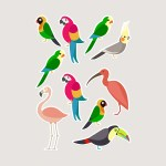 Custom Printed Stickers - The Big Display Company