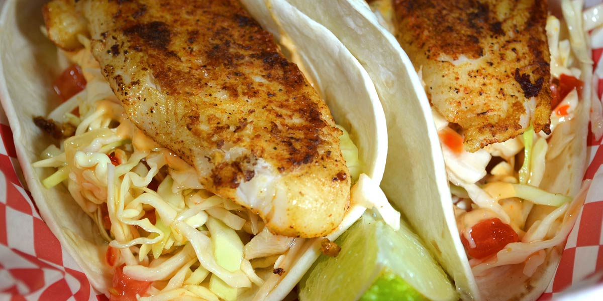 The Big Owl Fish Tacos Featured