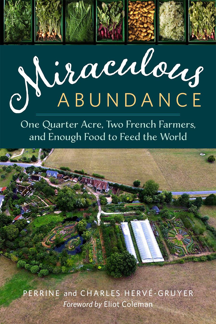 Miraculous Abundance book cover