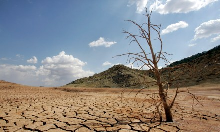 Climate‐related drought is starting to affect wealthy countries like Spain