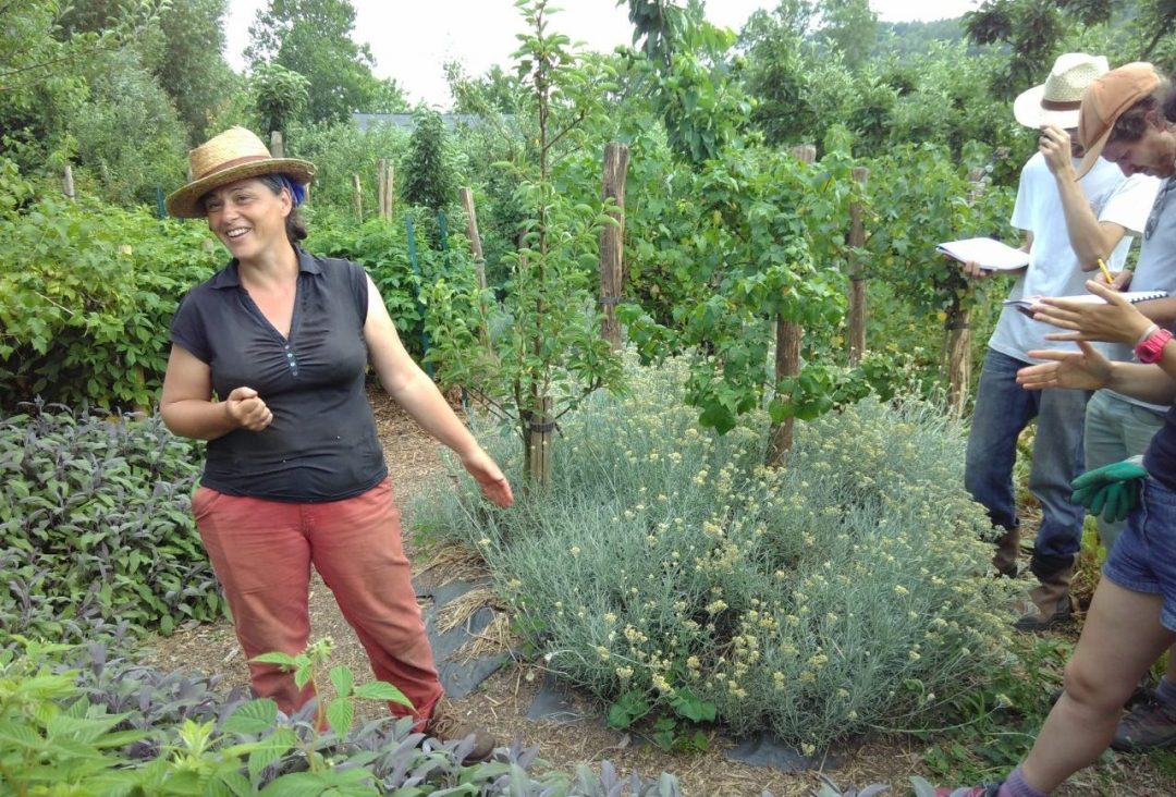 Perrine giving a permaculture class