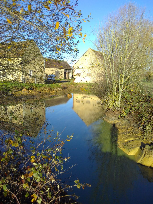 The pond is filling up - end Nov 2017