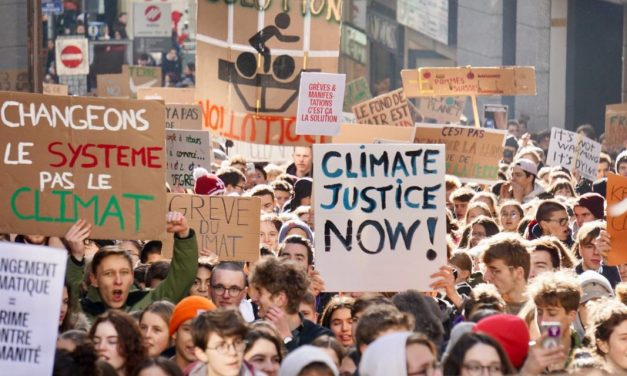 S is for Schools Strike (for the climate)