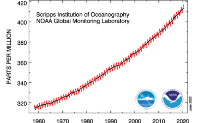 Scientists find coronavirus crisis has had little impact on overall CO2 concentration trend