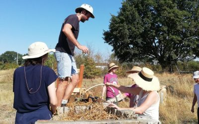 Winter 2020-21: pond digging, offering new courses, tree planting, loving life