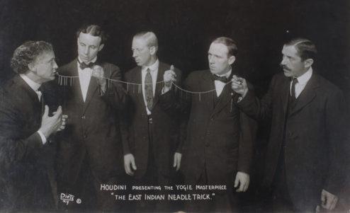 Houdini Swallow