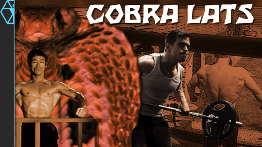 Bruce Lee Cobra Lats