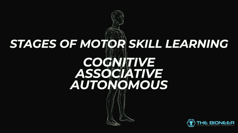 Stages of Motor Skill Learning - The Bioneer