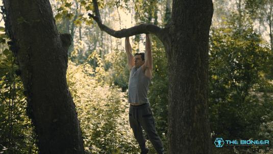 Pull ups on tree branch