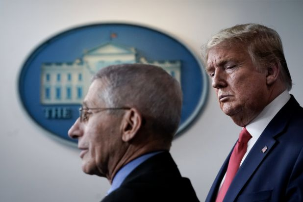 WaPo's Rucker: Dr. Fauci Is in the President's Ear Every Day, but Trump Takes Advice from Outside the Government