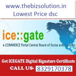 Icegate Digital Signature low price for Customs gst import export return dsc