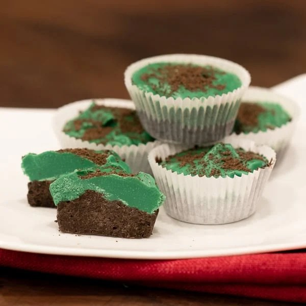 A chocolate mint candy with an oreo crumb crunch. Using Wilton candy melts, they are a snap to make and are a great treat to have during Christmas or any time of year!