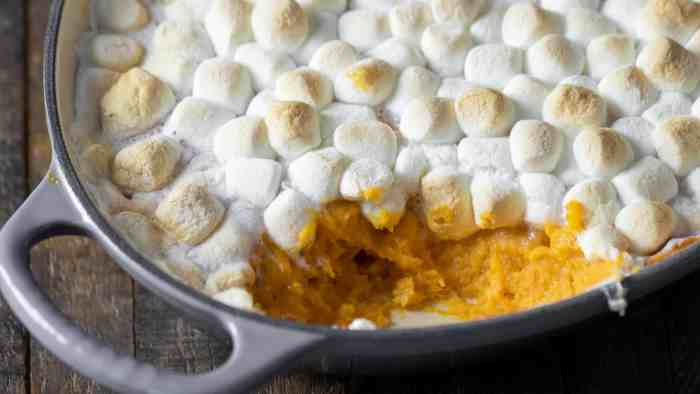 Wide overhead picture of the baked casserole with toasted marshmallows.