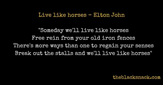 citazione-live-like-horses-elton-john-blog-featured-image-thumbnail