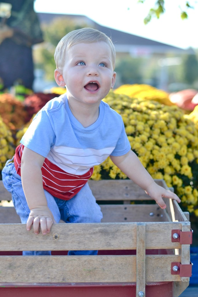 Liam 16 Month Check-in and Toddler Favorites