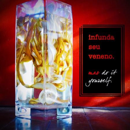 diy-infunda-liquor-alcool-theblindtaste