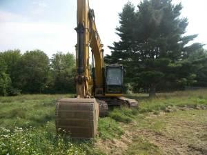 Excavator and big pine tree