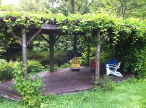 Arbour by the river