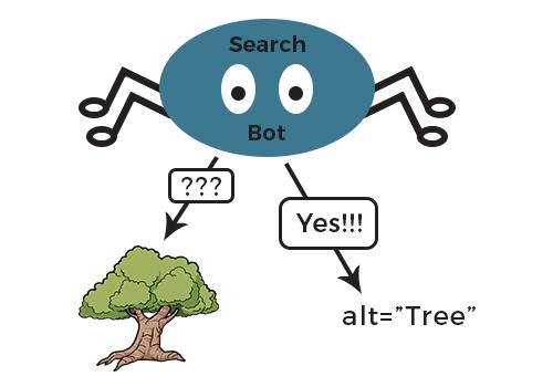 Missing Alt image text and Meta Description