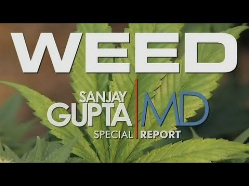 How much a marijuana addict is CNN's Dr. Sanjay Gupta