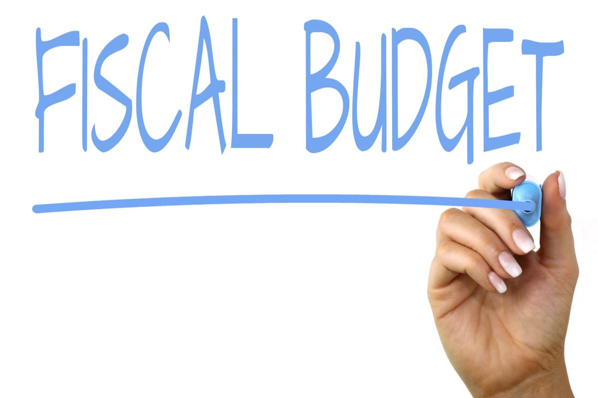 Image result for fiscal budget