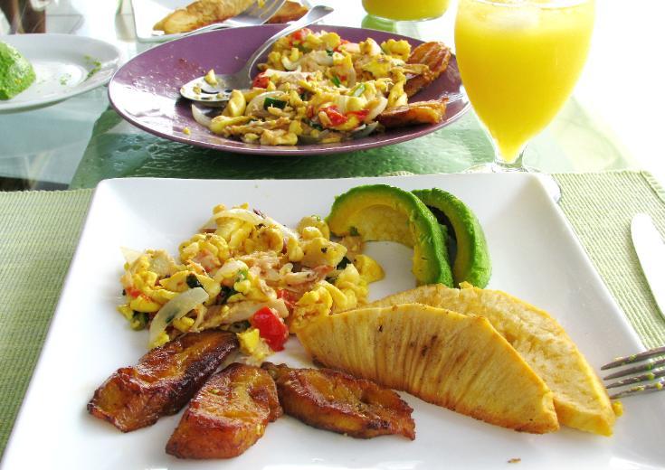 Jamaica Boutique Bed  Breakfast Inn  Luxury Caribbean
