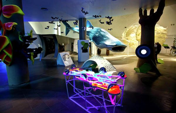 Mind Museum (Taguig City) - Oh! The Places You Go!
