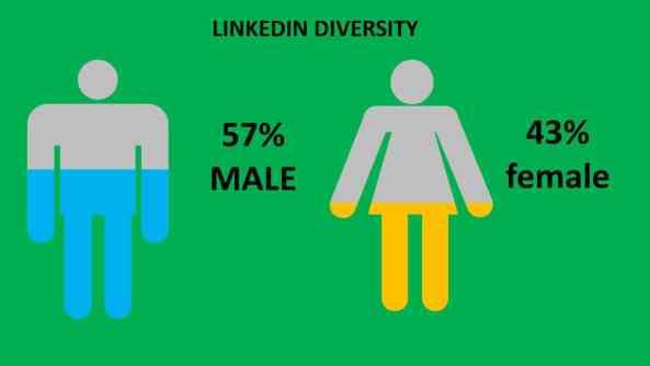LinkedIn Gender Diversity