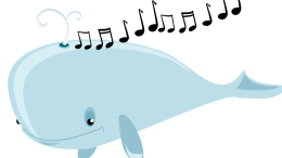 Whale songs, Whale, Communication, Songs