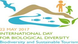 IDB, 22nd May Worlds Biodiversity Day